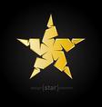 luxury golden star on black background vector image vector image