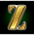 silver figure with gold z vector image