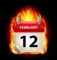 twelfth february in calendar burning icon on vector image vector image