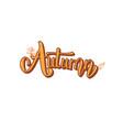 autumn handwritten lettering vector image vector image