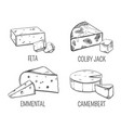 feta and colby jack emmental and cheese sketch vector image vector image