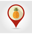 Pineapple flat pin map icon Tropical fruit vector image vector image