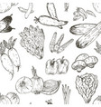seamless pattern with hand drawn vegetables vector image vector image