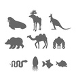 Set Wild animal silhouette Animals from Zoo and vector image