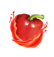 tomato with juice splash isolated on a background vector image vector image