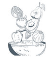 vegetable and fruits on bowl hand draw vector image