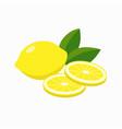 whole lemon and slices lemon gleen leaves vector image