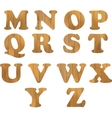 Alphabet made of wooden letters isolated on white vector image