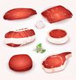 beef meat set vector image