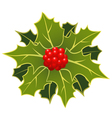 christmas holly leafs with berries vector image vector image