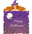 Halloween witch with message board vector image vector image