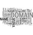 is your domain name worth a fortune text vector image vector image
