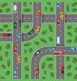 top view highways with cars and with trees vector image vector image