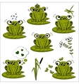 green frogs set vector image