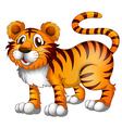 A tiger vector image vector image