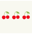 Cherries with green leaf in a row Tasty food card vector image vector image