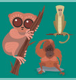 different breads monkey character animal wild zoo vector image vector image