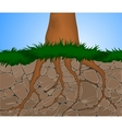 Erosion nature vector image vector image