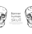 horizontal banner with drawing human skull with vector image vector image