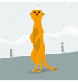 Meerkat looking for space vector image