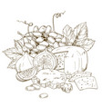 pile of hand drawn cheese grape and fig vector image vector image