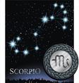 scorpio zodiac sign scorpion logo vector image vector image