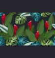 seamless pattern tropical leaves with ginger vector image