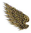 wheat ears in shape eagle wing vector image vector image