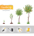 gardening and growth vector image