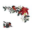 bullfinches and christmas plants festive vector image