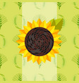 cereal seeds grain product sunflower vector image