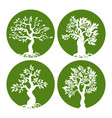 green tree silhouette icon set vector image