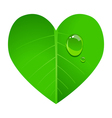 Love Green vector image vector image