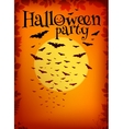 orange halloween party background with bats vector image