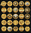 premium quality retro golden badge collection vector image vector image