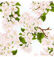 seamless texture branch of apple tree vector image vector image