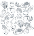 vegetables and fruits hand draw vector image vector image