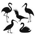 Wild birds vector | Price: 1 Credit (USD $1)