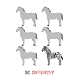 Be different - zebra and horses vector image