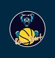 bear sport basket ball vector image vector image