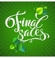 Final sales summer promotion calligraphical vector image
