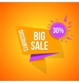 Sale special offer 30 off vector image