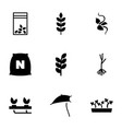 seed icons vector image vector image