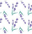watercolor pattern with lavender hand vector image vector image