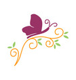 butterfly insect leaf logo design icon isolated vector image vector image
