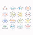 fish vintage frame badges or logo templates vector image