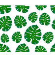 monstera seamless pattern print with leaves vector image