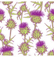 seamless pattern with onopordum acanthium vector image vector image