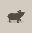 Pig 1P vector image
