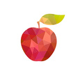 Apple with abstract texture vector image